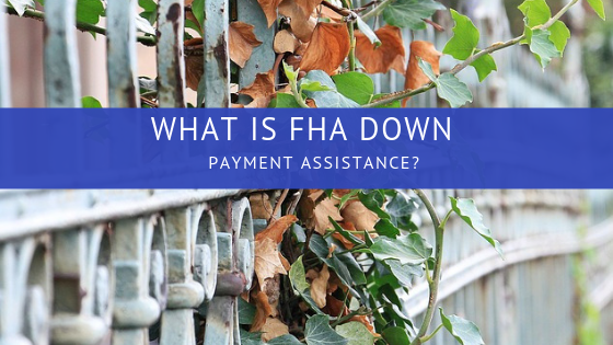 What is FHA down payment assistance?